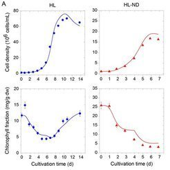 "<p class=""MPIBildunterschrift""><strong>Figure 2</strong>: Growth model of <em>Dunaliella salina</em>.</p> <p class=""MPIBildunterschrift"">(a) Model simulation for high light (HL) and high light-nutrient depletion (HL-ND) scenarios compared to experimental data. Solid lines represent model simulations, points mark exp. data.</p>"