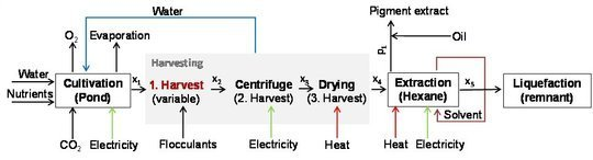 "<p class=""MPIBildunterschrift""><strong>Figure 4:</strong> Simplified flow scheme of the overall process system for ß-carotene production using <em>D. salina</em> cultivation followed by multistage harvesting, extraction and optional liquefaction of the residual material. Figure from [5].</p>"