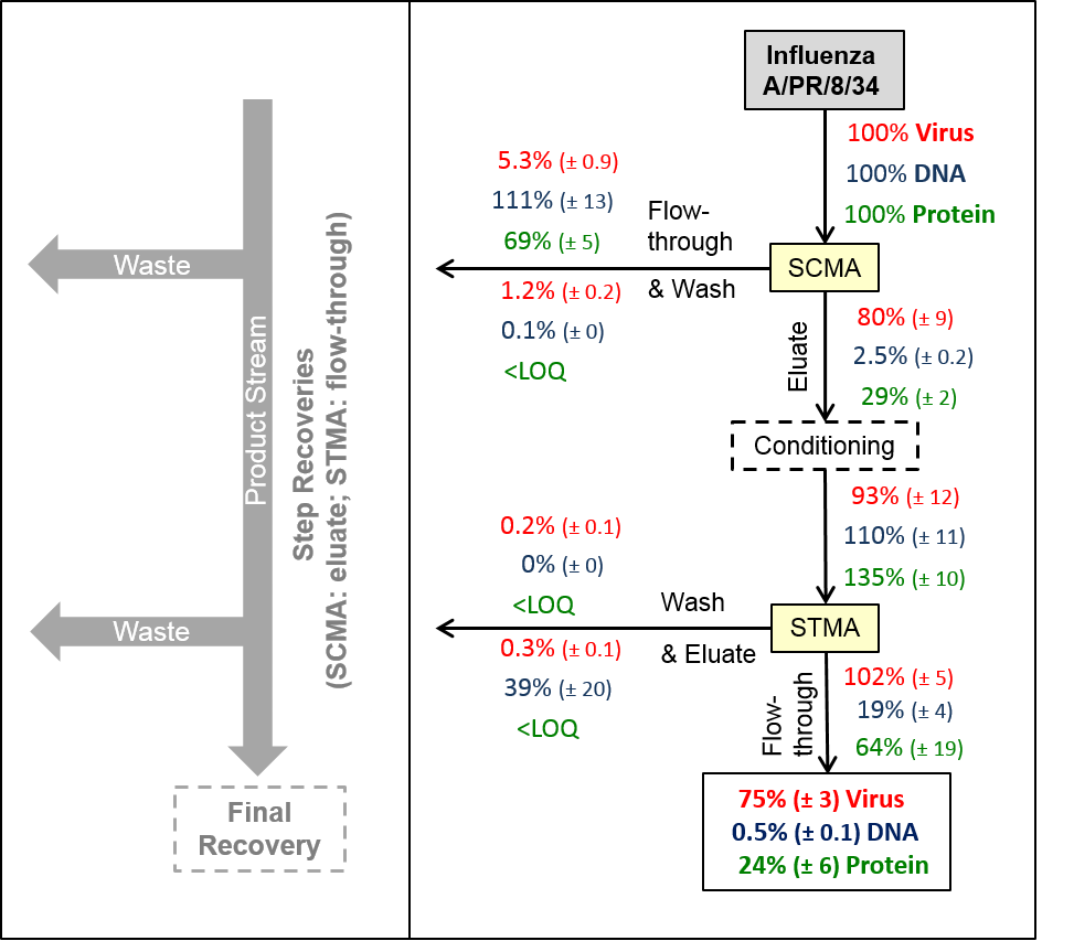 <b>Fig. 1</b> <i>Proposal for a complete downstream process for influenza virus (The green box indicate optional downstream units; the red box shows the concentration-limits for the vaccine and the contaminants)</i>