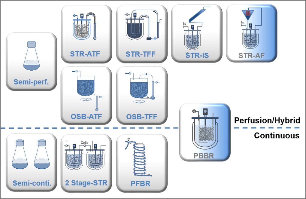 Fig.1 Overview on current perfusion and continuous process strategies evaluated in the USP team. STR: stirred tank bioreactor, OSB: orbital shaken bioreactor, ATF: alternating tangential flow filtration, TFF: tangential flow filtration, IS: inclined settler, AF: acoustic filter, PBBR: packed bed bioreactor, PFBR: plug flow bioreactor. The PBBR can be operated as a perfusion as well as a continuous process.