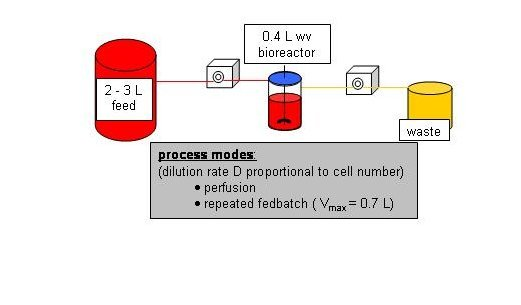 Figure 1.2: Experimental set-up