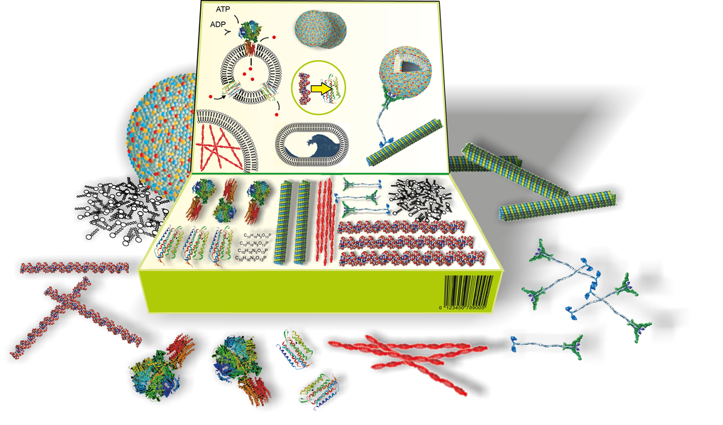 Biology based on the toolbox principle: The scientists from nine Max Planck Institutes and Friedrich-Alexander-Universität use inanimate biochemical components to construct cell-like structures and, ultimately, artificial cells. In doing so, they aim not only to create the basis for various biotechnology applications, but also to understand the basic principles of life and its emergence.