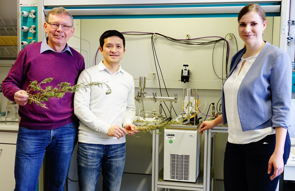 The scientists from the Max Planck Institute in Magdeburg (from left to right), Prof. Dr.-Ing. Andreas Seidel-Morgenstern, Giang Truong Vu und Susann Triemer, in front of their experimental set-up and with dried annual wormwood plants (<em>Artemisia annua</em>).