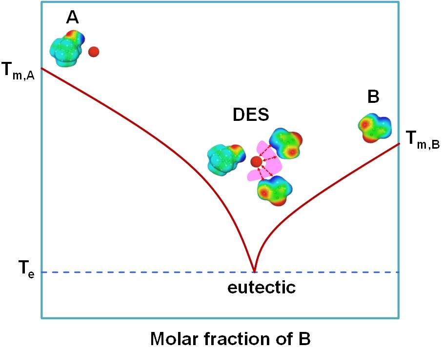A typical phase diagram of DES formed by mixing two components A (acting as hydrogen bond acceptor) and B (acting as hydrogen bond donor).