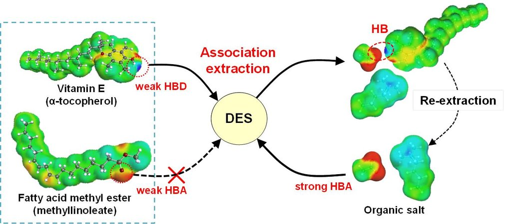 Conceptual illustration of association extraction of Vitamin E by in situ formation of DES.